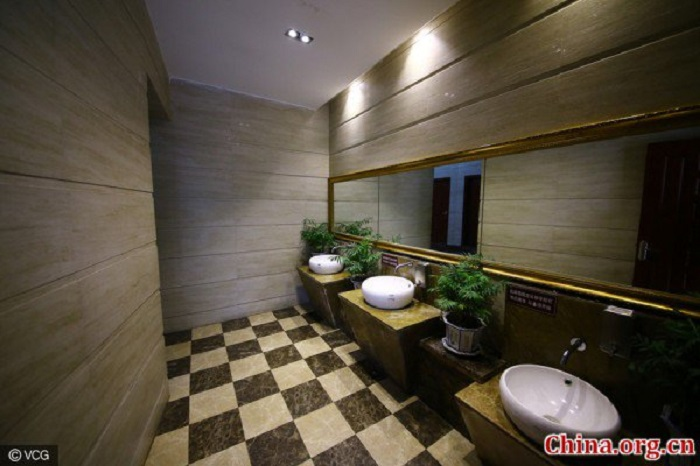 prabangus-tualetas4