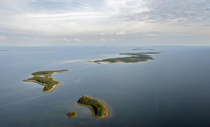 salos-estijoje